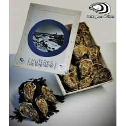 Huîtres creuses - Calibre 3